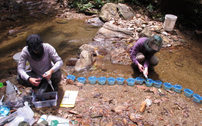 Conducting experiments at one of the study streams